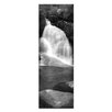 Artist Lane Lady's Bath Falls by Andrew Brown Photographic Print Wrapped on Canvas in Black/White