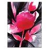 "Artist Lane Leinwandbild ""Organic Impressions No.12"" von Kathy Morton Stanion, Kunstdruck"