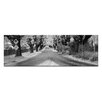 Artist Lane The Avenue by Andrew Brown Photographic Print Wrapped on Canvas in Black/White