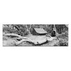 Artist Lane The Refuge by Andrew Brown Photographic Print Wrapped on Canvas in Black/White