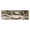 Artist Lane The Refuge by Andrew Brown Photographic Print Wrapped on Canvas