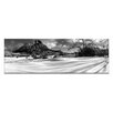 Artist Lane Pristine by Andrew Brown Photographic Print Wrapped on Canvas in Black/White