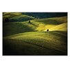 Artist Lane Greens and Golds by Caroline Gorka Photographic Print on Canvas