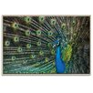 Artist Lane 'Glamour' by Andrew Paranavitana Framed Photographic Print on Wrapped Canvas