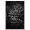 Artist Lane 'Grove' by Andrew Paranavitana Framed Photographic Print on Wrapped Canvas