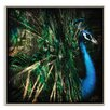 Artist Lane 'Splendour' by Andrew Paranavitana Framed Photographic Print on Wrapped Canvas