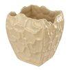 Laura Cole Venezia Vase