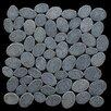 Pebble Tile Coin Random Sized Natural Stone Pebble Tile in Black