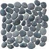 Pebble Tile Classic Pebble Random Sized Natural Stone Pebble Tile in Black