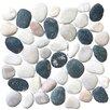 Pebble Tile Classic Pebble Random Sized Natural Stone Pebble Tile in Black White