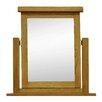 Hazelwood Home Trinket Mirror
