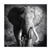 Home Etc YoungOnes Elephant Photographic Print