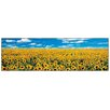 "House Additions ""A Sunflower Field in Provence"" by Anthea Images Photographic Print Plaque"