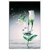 House Additions 'Crystal Flowers' by Zimmerman Graphic Art Plaque