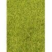 Coralie Flooring Shimmer Green Area Rug