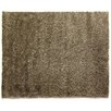 Rug Expressions Ivory Area Rug