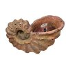 Conch Fountain - Fantastic Craft Indoor and Outdoor Fountains