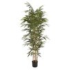 Cole & Grey Polyethylene Potted Bamboo Tree in Planter