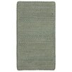 Capel Rugs Vivid Cross Sewn Braided Gray/Taupe Area Rug