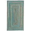 Capel Rugs Jennie Lake Concentric Braided Azure Area Rug