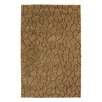 Dynamic Rugs Aria Earth Brown Area Rug