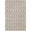 dCOR design Hawkins Indoor/Outdoor Distressed Leaf Pattern Grey/Ivory Area Rug