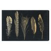 Mercury Row Corinthian Feathers Graphic Art on Wrapped Canvas