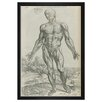 Mercury Row Vesalius IV Framed Graphic Art
