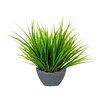 Mercury Row Arrangement Grass in Curved Planter Pot