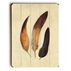 Mercury Row Three Feathers Graphic Art