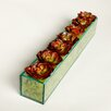 TC Floral Company Echeveria in Rectangular Glass Box with Green Moss