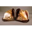 Judith Edwards Designs Shell Book Ends