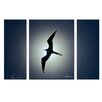 Ready2hangart 'Frigatebird' by Christopher Doherty 3 Piece Photographic Printt on Wrapped Canvas Set