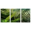 Ready2hangart 'Green Palm' by Alexis Bueno 3 Piece Oversized Wrapped Canvas Wall Art Set