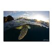 Ready2hangart 'Sea Turtle' by Christopher Doherty Framed Photographic Print on Wrapped Canvas