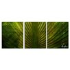 Ready2hangart 'Palms' by Alexis Bueno 3 Piece Wrapped Canvas Wall Art Set