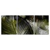 Ready2hangart 'Abstract Palm II' by Alexis Bueno 3 Piece Graphic Art on Wrapped Canvas Set