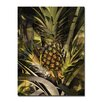 Ready2hangart Pineapple Abstraction' Framed Graphic Art on Wrapped Canvas