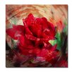 Ready2hangart 'Rose in Bloom' Framed Graphic Art on Wrapped Canvas