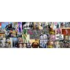 RareArtStudios Mr Brainwash Critisized Vibrant Mural Limited Graphic Art