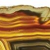 "Empire Art Direct ""Golden Brown Agate"" Frameless Free Floating Tempered Glass Panel Graphic Art"