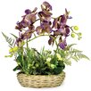 Boston International Orchids and Ferns in Basket
