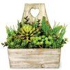 Boston International Succelents and Florals in Wood Pail
