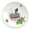 Boston International Maison d'Olive Bowl Dipping Dish (Set of 4)