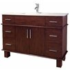 "American Imaginations 47"" Transitional Vanity Base"