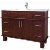"""American Imaginations 48"""" Single Transitional Birchwood-Veneer Bathroom Vanity Set"""
