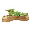 Forest Garden Caledonian Novelty Raised Garden