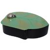 Bodhi Tree Collections Round Leaf Box with Ladybug