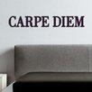 Cuadros Lifestyle Wanddekoration Carpe Diem