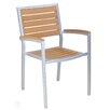 Adriano Teak Arm Chair (Set of 2)